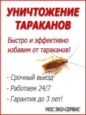 Уничтожение тараканов...