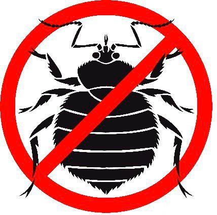 убить паразитов в человеке