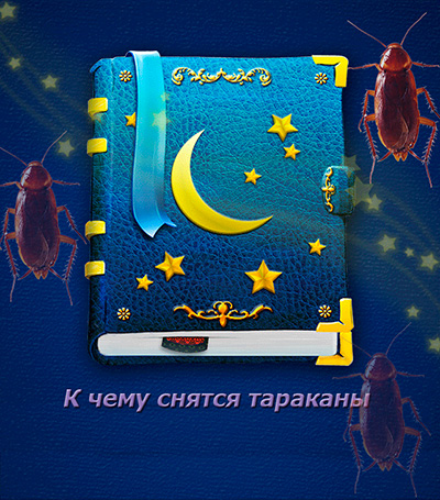 Что говорят про сны с тараканами сонники