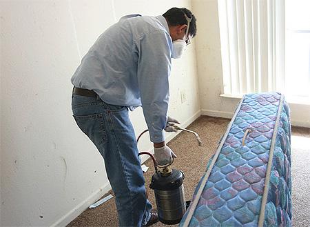Обработка матраса от постельных клопов