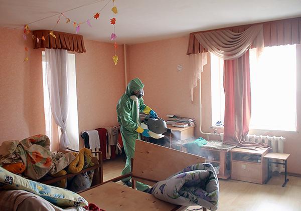 Обработка квартиры от клопов службой дезинсекции.
