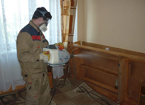 Вызов дезинсекторов считается наиболее эффективным и быстрым способом избавления от насекомых в доме.