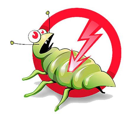 гвоздика очищение от паразитов