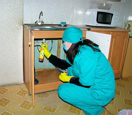 Спреи нужно распылять в местах возможного скопления насекомых