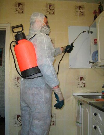 Работник службы дезинсекции обрабатывает квартиру от тараканов