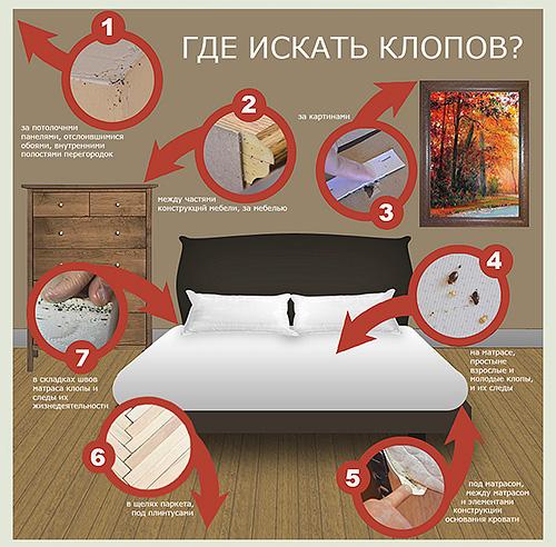 На картинке указаны места в квартире, где следует искать клопов прежде всего