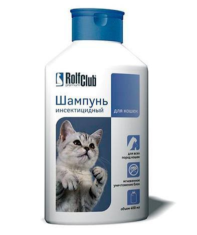 Как вывести блох у кошки и избавиться от них навсегда