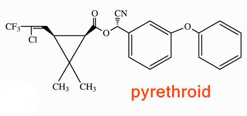 Пример химической структуры пиретроидов