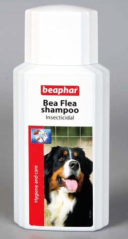 Шампунь Beaphar от блох дорог, но эффективен и безопасен для собак
