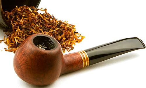 Табак тоже отпугивает бабочек моли