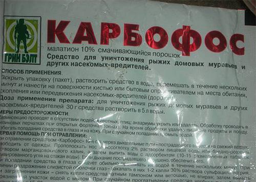 Согласно инструкции, порошок Карбофоса нужно перед использованием развести водой