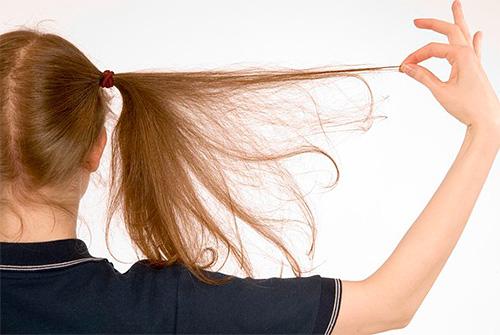 Сонник Цветковой рекомендует воздержаться от рискованных затей, если приснились вши на голове или на теле
