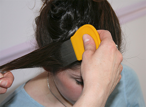 Для вычесывания вшей и гнид используют специальные гребни