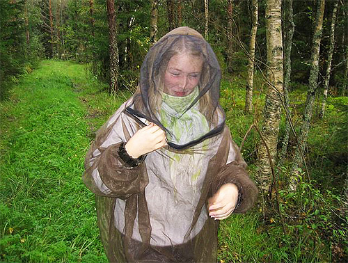 Чтобы избежать укусов насекомых в лесу, в том числе и лосиных блох, пользуйтесь накомарником