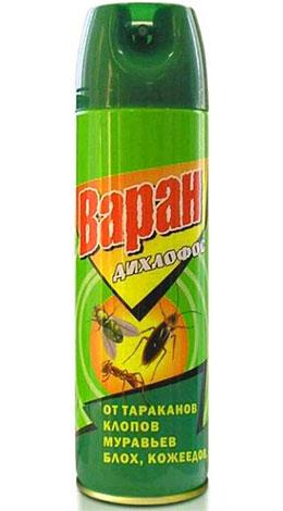 Дихлофос сегодня применяется для уничтожения самых разных насекомых