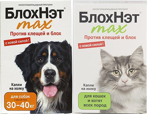 Знакомимся с линейкой препаратов Блохнэт для борьбы с блохами у кошек и собак