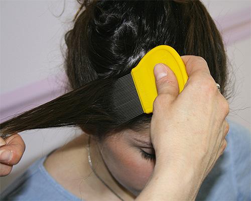 После того, как дегтярное мыло будет смыто с волос, необходимо прядь за прядью вычесать вшей гребнем