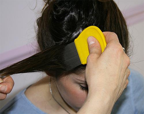 Пряди волос нужно вычесывыать от самых корней
