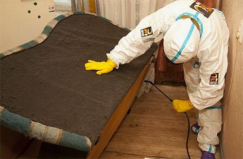 Дезинсекторы обычно используют в работе концентраты для разбавления и распыления в виде спрея