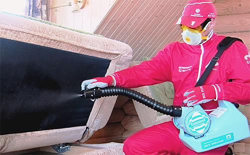 Если в квартире большое количество насекомых-паразитов, то лучше доверить обработку профессиональным дезинсекторам.