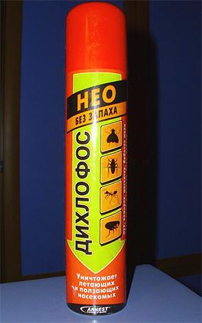Дихлофос Нео можно применять для обработки дома от блох