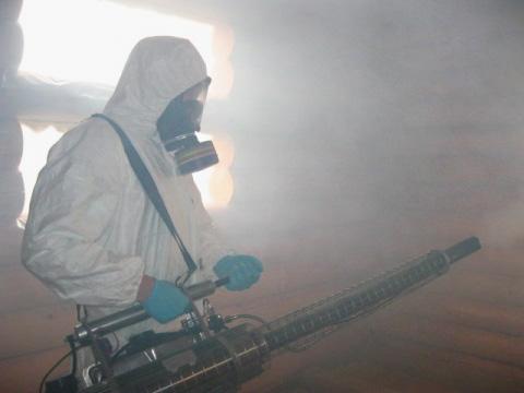 Рассмотрим особенности процедуры уничтожения клопов с помощью горячего тумана и насколько такой метод обработки помещений эффективен.