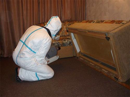 На фотографии специалист службы дезинсекции проводит обработку дома от насекомых при помощи генератора холодного тумана.