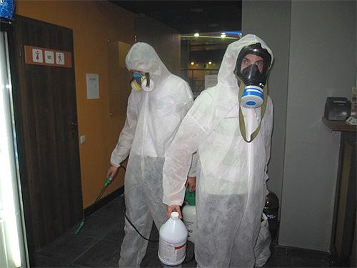 На фотографии показаны специалисты-дезинсекторы, проводящие обработку помещения.