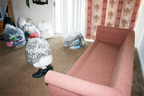 Перед приездом службы дезинсекции необходимо подготовить квартиру к обработке...