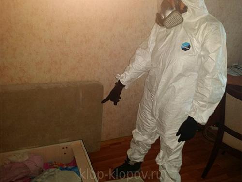 В компании Дезцентр помимо уничтожения клопов также оказывают услуги по выведению различных видов других насекомых и грызунов.