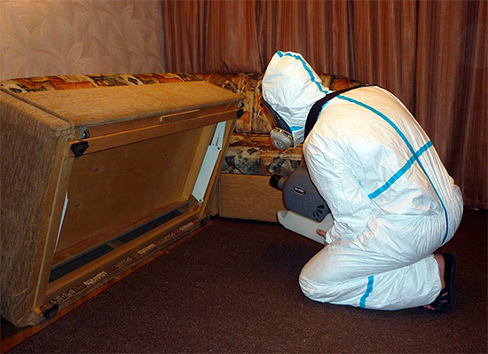 Пример обработки помещения от тараканов с помощью генератора холодного тумана.