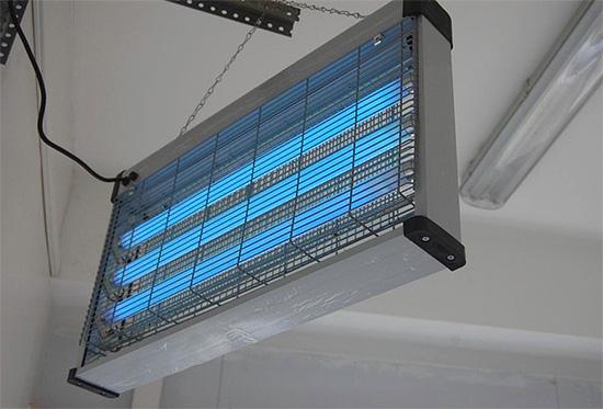 Довольно часто лампы от насекомых покупают для защиты помещений магазинов и ресторанов.