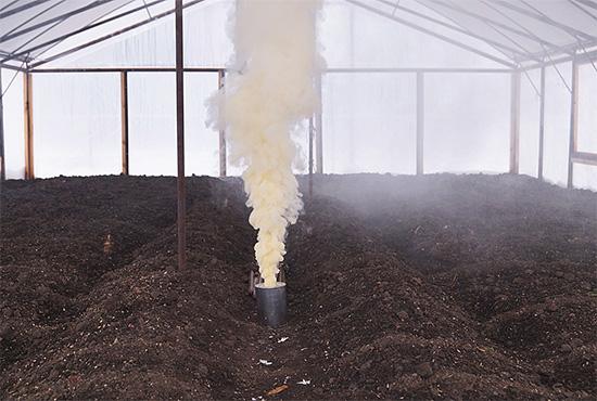 Пример применения специальной дымовой шашки для уничтожения насекомых в помещении (теплице).