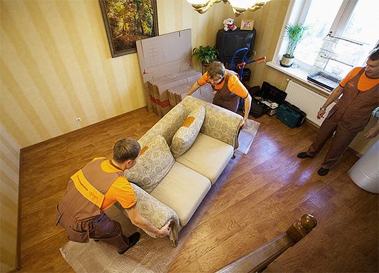 Специалисты по дезинсекции за дополнительную плату могут сами подготовить помещение к обработке от насекомых.
