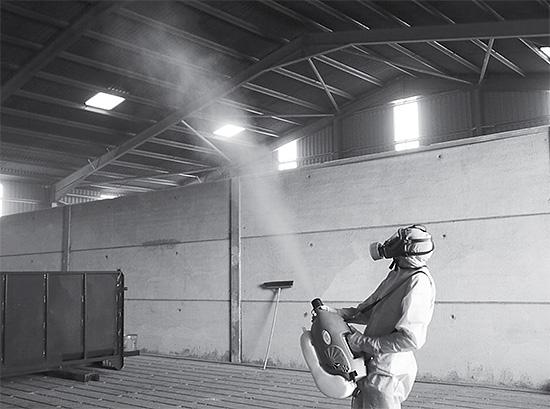Для обработки больших помещений от насекомых без вызова профессионалов зачастую бывает просто не обойтись.