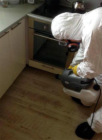 На фотографии показано, как дезинсектор обрабатывает труднодоступные места на кухне.