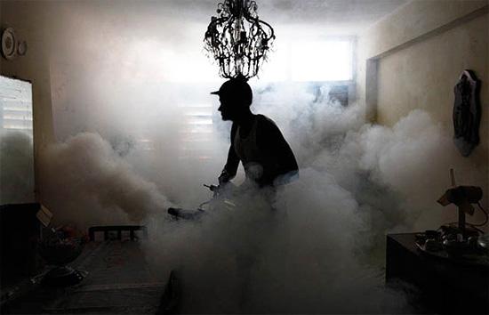 Вообще говоря, обработка квартиры и холодным, и горячим туманом дает обычно хороший эффект в обоих случаях.
