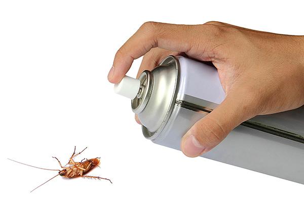 Многие средства от тараканов и других ползающих и летающих насекомых содержат в качестве действующих веществ пиретроиды.
