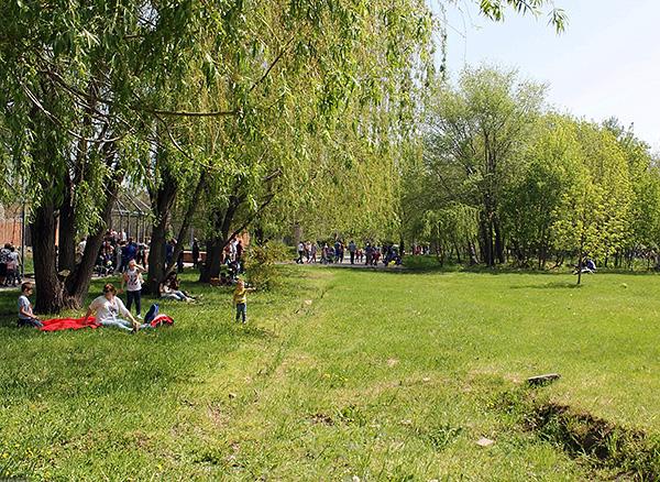 Укус боррелиозного клеща может произойти не только в лесу, но и в городских парках и скверах.