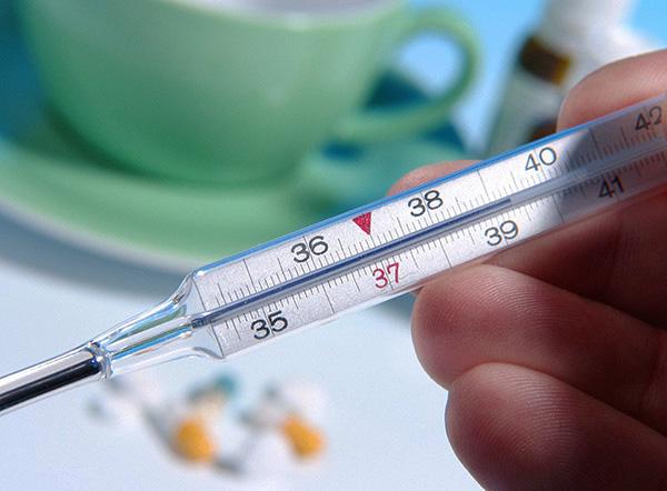 Одним из первых симптомом клещевого энцефалита является повышение температуры.