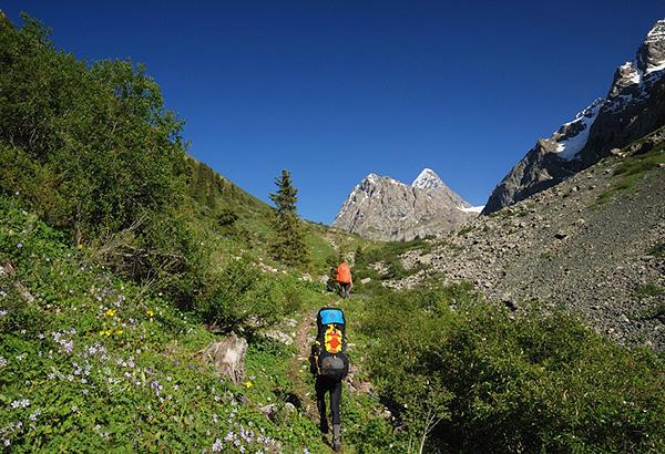 Тропа, по которой регулярно ездят егеря на лошадях в горах Центрального Кавказа
