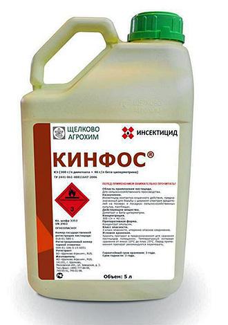 Кинфос - еще одно эффективное средство для борьбы с паутинным клещом