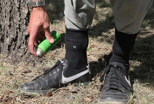 Выясняем, какой репеллент лучше всего способен защитить человека от укусов клещей на природе...