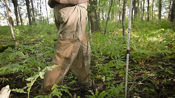 Обработанная инсекто-акарицидами одежда способна защищать от клещей до нескольких суток