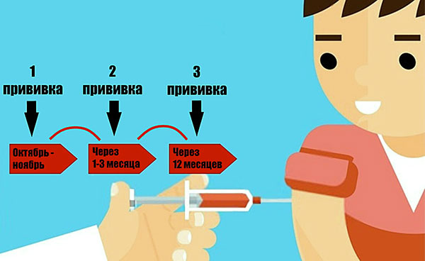 Прививка от энцефалита