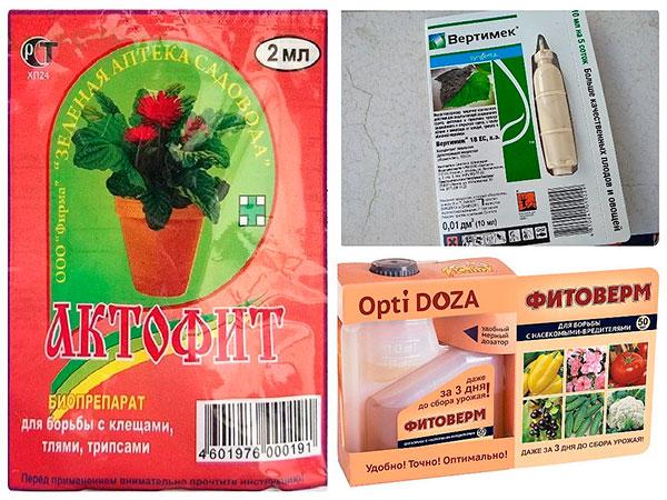 Препараты против почкового клеща