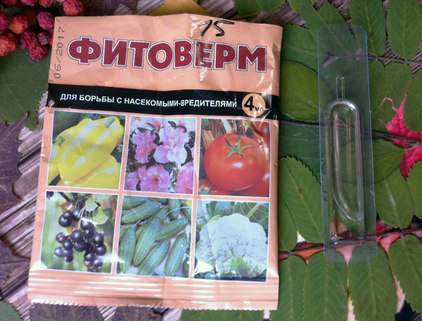 Фитоверм - акарицид, применяемый на любых стадиях созревания плодов