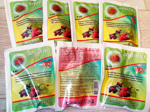 Гормональный препарат Аполло - один из самых безопасных средств против паутинного клеща