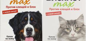 Средства Блохнэт для кошек и собак: отзывы и инструкция по применению