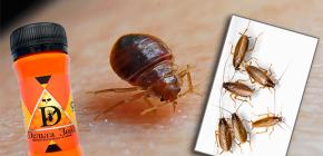Средство от клопов и тараканов Дельта Зона: описание и отзывы